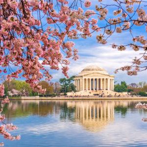 Find a Dentist in Washington, D.C.